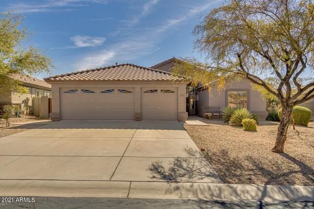 6829 E Las Animas Trail, Gold Canyon, AZ 85118 (MLS #6209049) :: Executive Realty Advisors