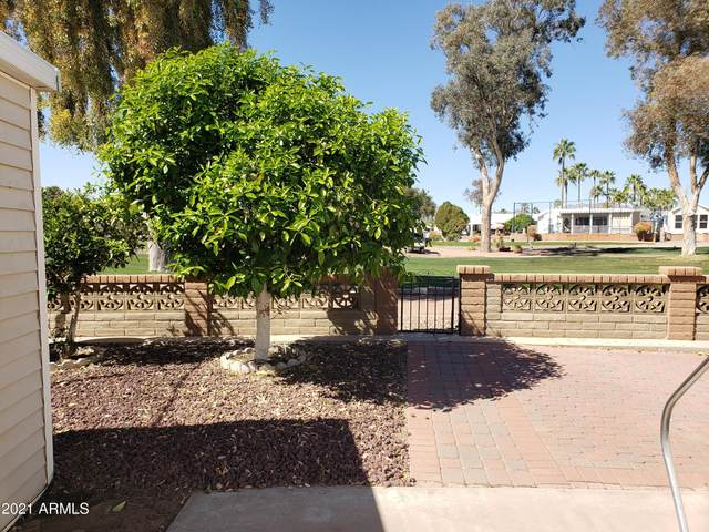 2347 S Pomo Avenue, Apache Junction, AZ 85119 (MLS #6209093) :: Devor Real Estate Associates