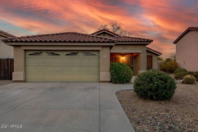 24002 N 36TH Drive, Glendale, AZ 85310 (MLS #6209163) :: The Daniel Montez Real Estate Group