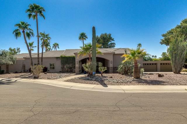 7028 N Via De Alegria, Scottsdale, AZ 85258 (MLS #6209199) :: Yost Realty Group at RE/MAX Casa Grande