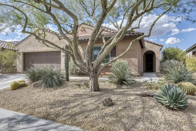 3742 E Ringtail Way, Phoenix, AZ 85050 (MLS #6209287) :: Yost Realty Group at RE/MAX Casa Grande