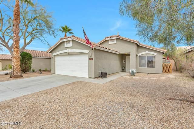 870 E Ross Avenue, Phoenix, AZ 85024 (MLS #6209354) :: Yost Realty Group at RE/MAX Casa Grande
