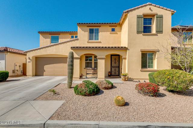 8048 W Cavedale Avenue, Peoria, AZ 85383 (MLS #6209378) :: Maison DeBlanc Real Estate