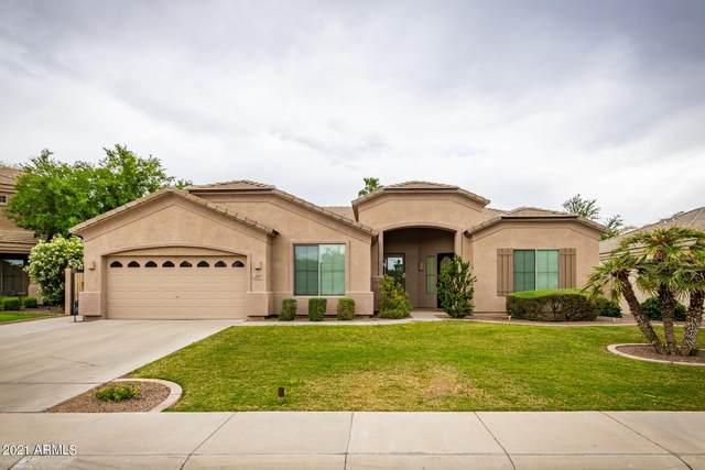3097 E Parkview Drive, Gilbert, AZ 85295 (MLS #6209437) :: The Luna Team