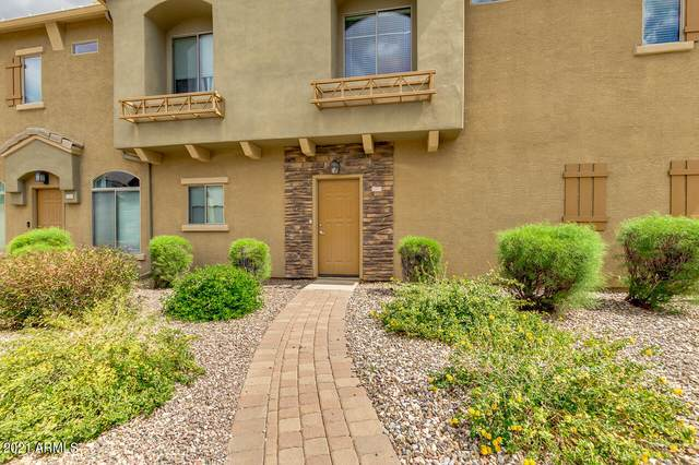 2024 S Baldwin #131, Mesa, AZ 85209 (MLS #6209451) :: The AZ Performance PLUS+ Team