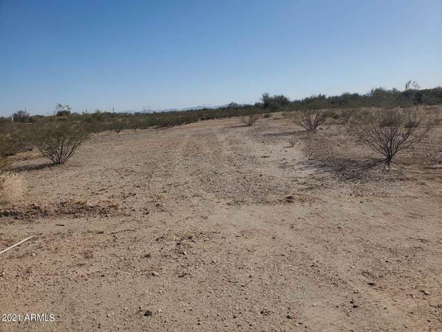 31339 W Osborn Road, Buckeye, AZ 85396 (MLS #6209619) :: Long Realty West Valley