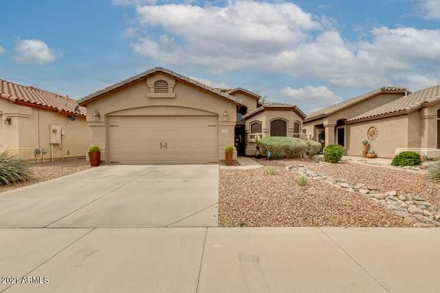 29702 N Broken Shale Drive, San Tan Valley, AZ 85143 (MLS #6209717) :: Yost Realty Group at RE/MAX Casa Grande