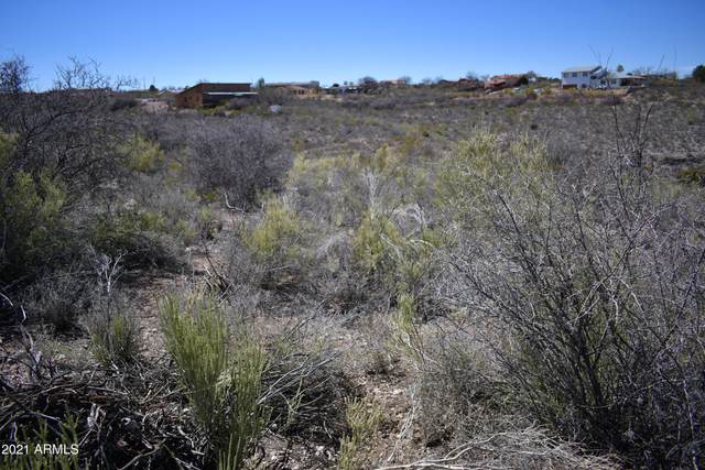TBD N Apache Drive, Tombstone, AZ 85638 (MLS #6210115) :: The Luna Team