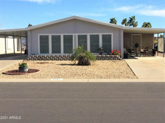 9065 E Olive Lane N, Sun Lakes, AZ 85248 (MLS #6210134) :: Long Realty West Valley