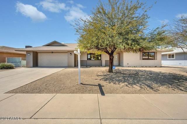 12448 W Fieldstone Drive, Sun City West, AZ 85375 (MLS #6210242) :: Yost Realty Group at RE/MAX Casa Grande