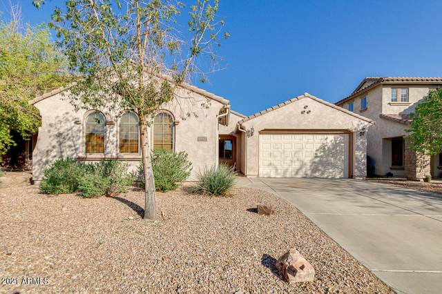 3399 N Spyglass Drive, Florence, AZ 85132 (MLS #6210264) :: The Property Partners at eXp Realty