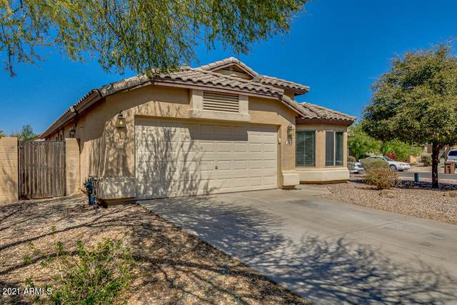 36 W Dexter Way, San Tan Valley, AZ 85143 (MLS #6210268) :: Yost Realty Group at RE/MAX Casa Grande