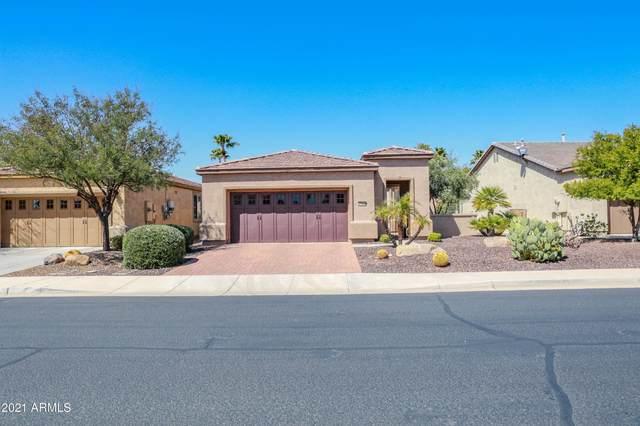 27598 N 129TH Lane, Peoria, AZ 85383 (MLS #6210358) :: neXGen Real Estate