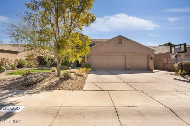 25815 N 43RD Place, Phoenix, AZ 85050 (MLS #6210363) :: Yost Realty Group at RE/MAX Casa Grande