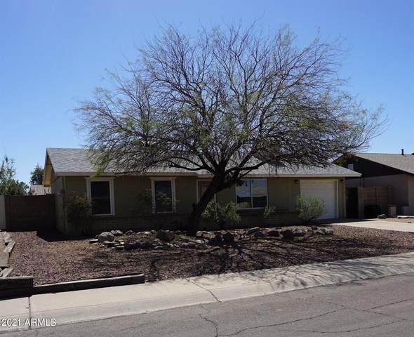 20021 N 17TH Lane, Phoenix, AZ 85027 (MLS #6210835) :: Yost Realty Group at RE/MAX Casa Grande
