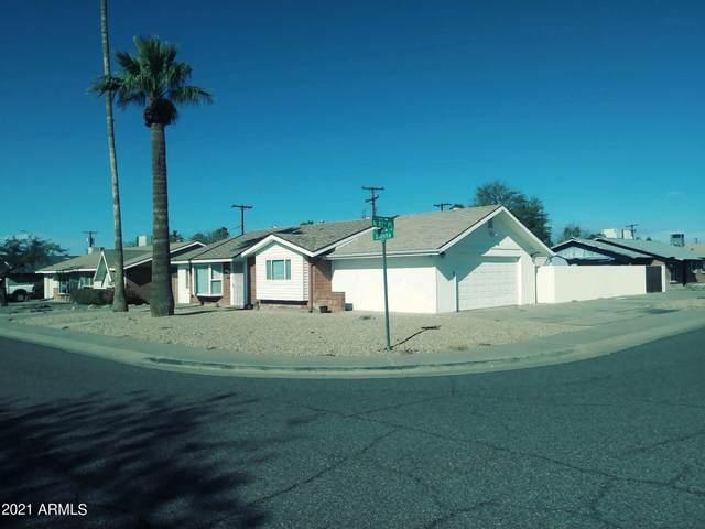 8742 E Dianna Drive, Scottsdale, AZ 85257 (MLS #6211009) :: Yost Realty Group at RE/MAX Casa Grande