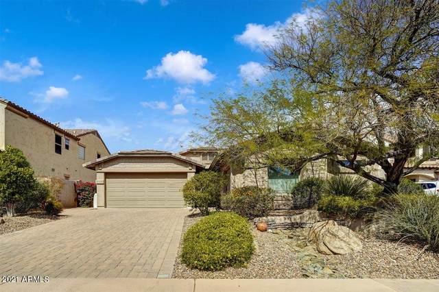 3006 W Donatello Drive, Phoenix, AZ 85086 (MLS #6211082) :: Yost Realty Group at RE/MAX Casa Grande
