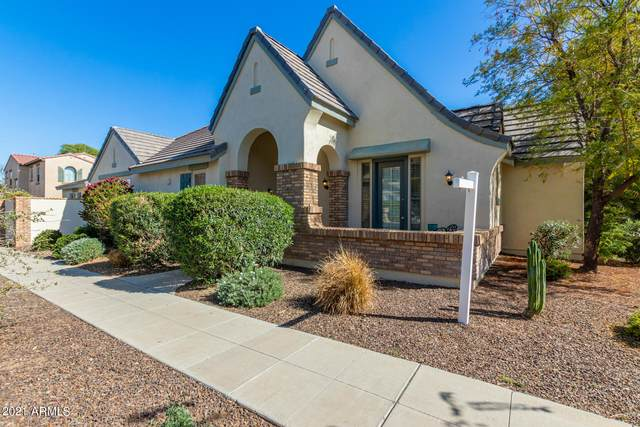 15251 W Alexandria Way, Surprise, AZ 85379 (MLS #6211144) :: Sheli Stoddart Team | M.A.Z. Realty Professionals