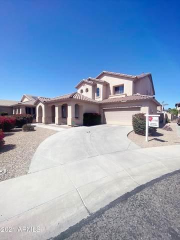 15468 W Tasha Circle, Surprise, AZ 85374 (MLS #6211175) :: Yost Realty Group at RE/MAX Casa Grande