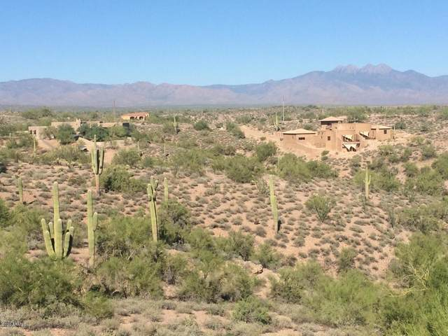 14565 N Vista Del Oro, Fort McDowell, AZ 85264 (MLS #6211200) :: The AZ Performance PLUS+ Team