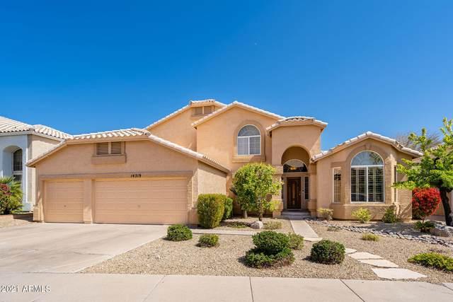 14219 N 17TH Place, Phoenix, AZ 85022 (MLS #6211304) :: Yost Realty Group at RE/MAX Casa Grande