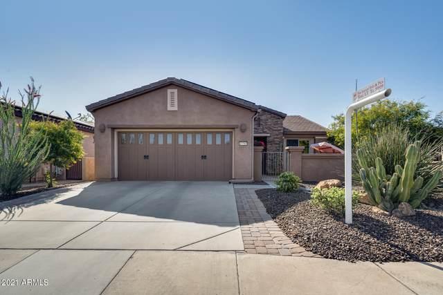 27797 N 129TH Lane, Peoria, AZ 85383 (MLS #6211402) :: Long Realty West Valley