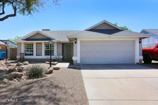 3329 W Potter Drive, Phoenix, AZ 85027 (MLS #6211502) :: Yost Realty Group at RE/MAX Casa Grande