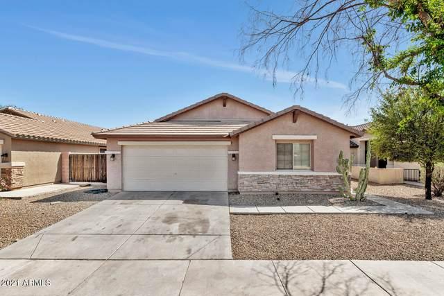 433 S 111TH Drive, Avondale, AZ 85323 (MLS #6211535) :: Yost Realty Group at RE/MAX Casa Grande