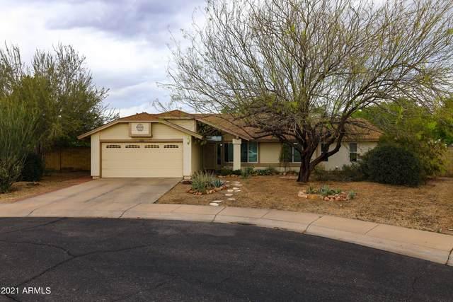 125 S Jentilly Court, Chandler, AZ 85226 (MLS #6211603) :: The Daniel Montez Real Estate Group
