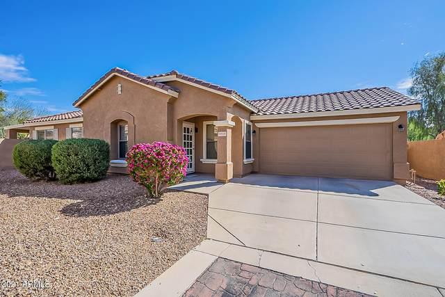 16916 W Rimrock Street, Surprise, AZ 85388 (MLS #6211610) :: Keller Williams Realty Phoenix