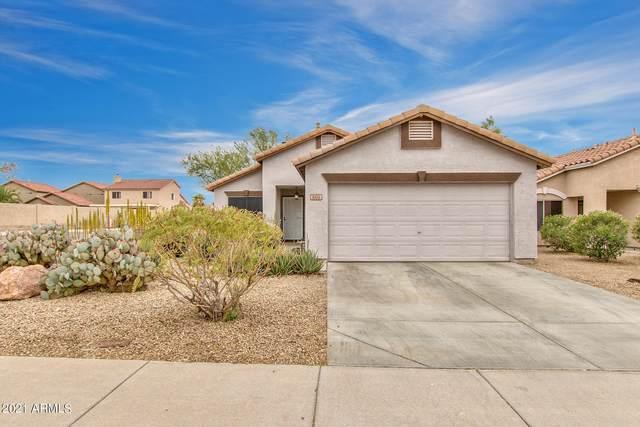 865 E Ross Avenue, Phoenix, AZ 85024 (MLS #6211683) :: Yost Realty Group at RE/MAX Casa Grande