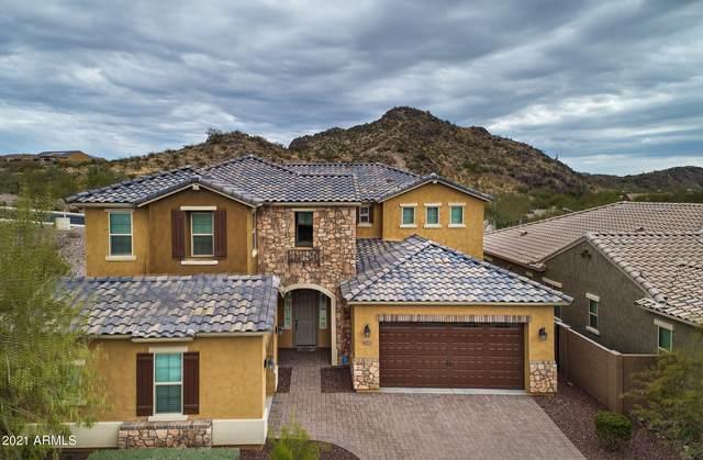 10155 W White Feather Lane, Peoria, AZ 85383 (MLS #6211743) :: Howe Realty