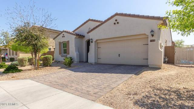 5127 N 148TH Avenue, Litchfield Park, AZ 85340 (MLS #6211798) :: The Garcia Group