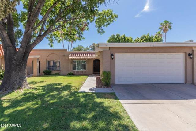 5311 S Palm Drive, Tempe, AZ 85283 (MLS #6211825) :: The AZ Performance PLUS+ Team