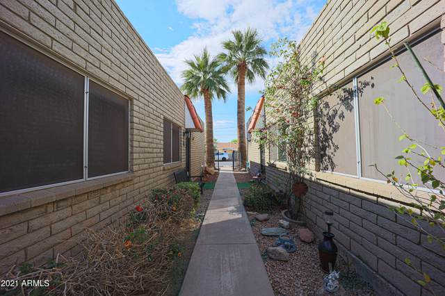 141 N Date Street #39, Mesa, AZ 85201 (MLS #6211883) :: The Carin Nguyen Team