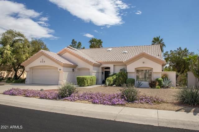 20415 N 133RD Drive, Sun City West, AZ 85375 (MLS #6211884) :: Yost Realty Group at RE/MAX Casa Grande