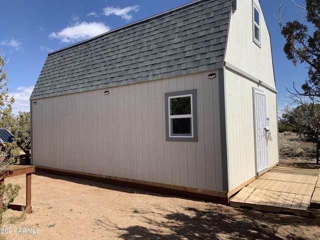 Lot 313 N Sierra Highlands Ranch View, St Johns, AZ 85936 (MLS #6211919) :: Kepple Real Estate Group