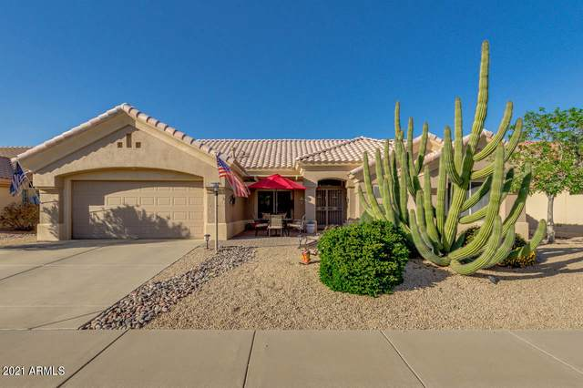 14210 W Domingo Lane, Sun City West, AZ 85375 (MLS #6211929) :: Howe Realty
