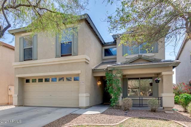 40799 W Thornberry Lane, Maricopa, AZ 85138 (MLS #6211934) :: Yost Realty Group at RE/MAX Casa Grande