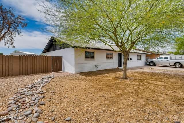 1033 W Hickory Street, Mesa, AZ 85201 (MLS #6211997) :: Yost Realty Group at RE/MAX Casa Grande