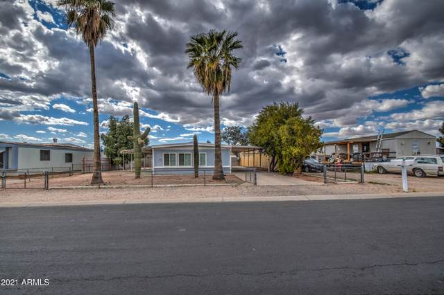 230 N 88th Place, Mesa, AZ 85207 (MLS #6211999) :: Yost Realty Group at RE/MAX Casa Grande