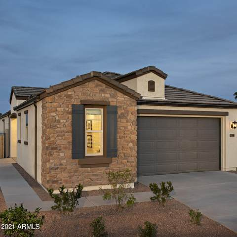 13610 W Sandridge Drive, Sun City West, AZ 85375 (MLS #6212127) :: Yost Realty Group at RE/MAX Casa Grande
