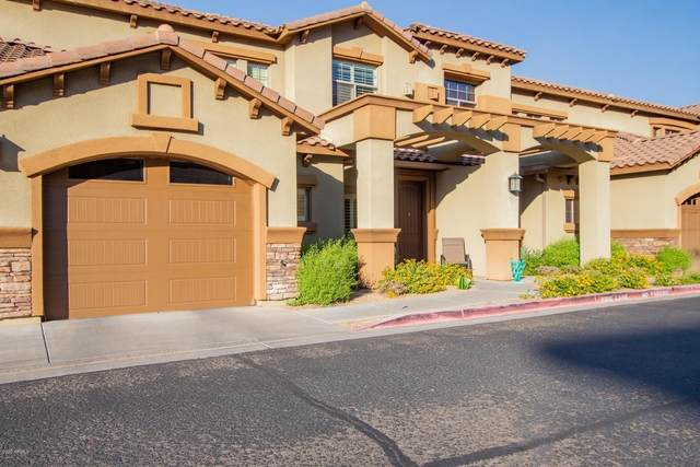 5450 E Deer Valley Drive #1228, Phoenix, AZ 85054 (MLS #6212142) :: The Dobbins Team