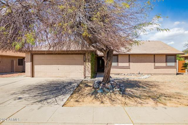 6008 W Evans Drive, Glendale, AZ 85306 (MLS #6212454) :: Yost Realty Group at RE/MAX Casa Grande