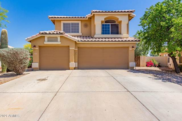 979 N Joshua Tree Lane, Gilbert, AZ 85234 (MLS #6212459) :: Yost Realty Group at RE/MAX Casa Grande