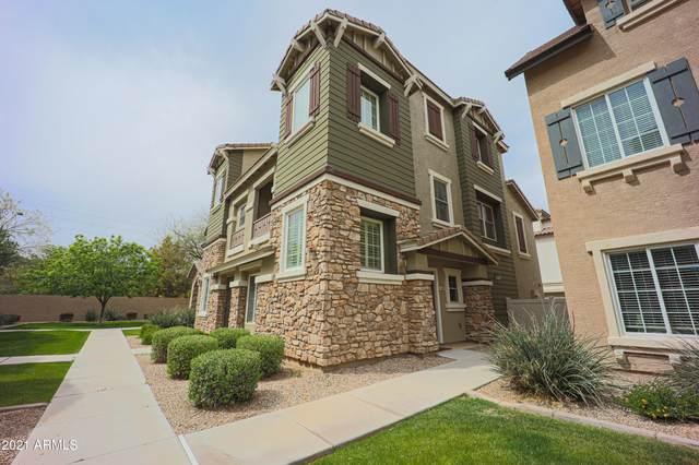 1368 S Sabino Drive, Gilbert, AZ 85296 (MLS #6212493) :: Yost Realty Group at RE/MAX Casa Grande