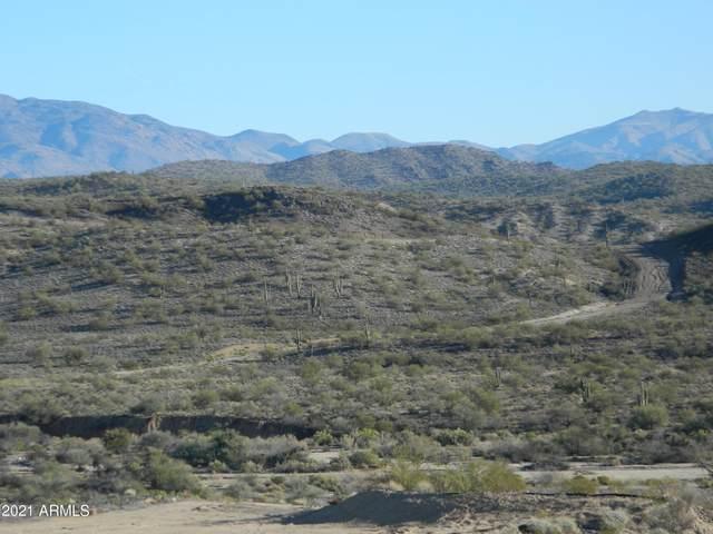 36XXX S Scenic Loop Road, Wickenburg, AZ 85390 (MLS #6212590) :: Long Realty West Valley