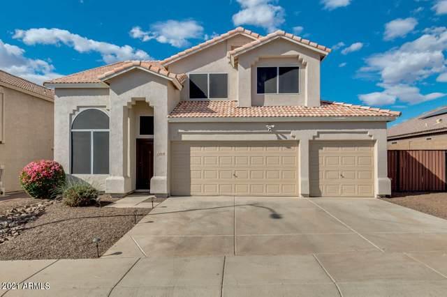 1444 E Behrend Drive, Phoenix, AZ 85024 (MLS #6212616) :: Yost Realty Group at RE/MAX Casa Grande