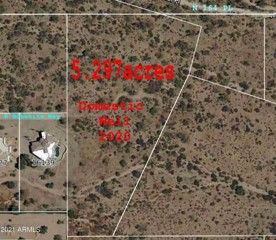 162xxx E Bobwhite Way, Scottsdale, AZ 85262 (MLS #6212715) :: Openshaw Real Estate Group in partnership with The Jesse Herfel Real Estate Group
