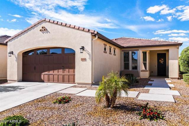 306 E Lime Court, San Tan Valley, AZ 85140 (MLS #6212758) :: The Everest Team at eXp Realty